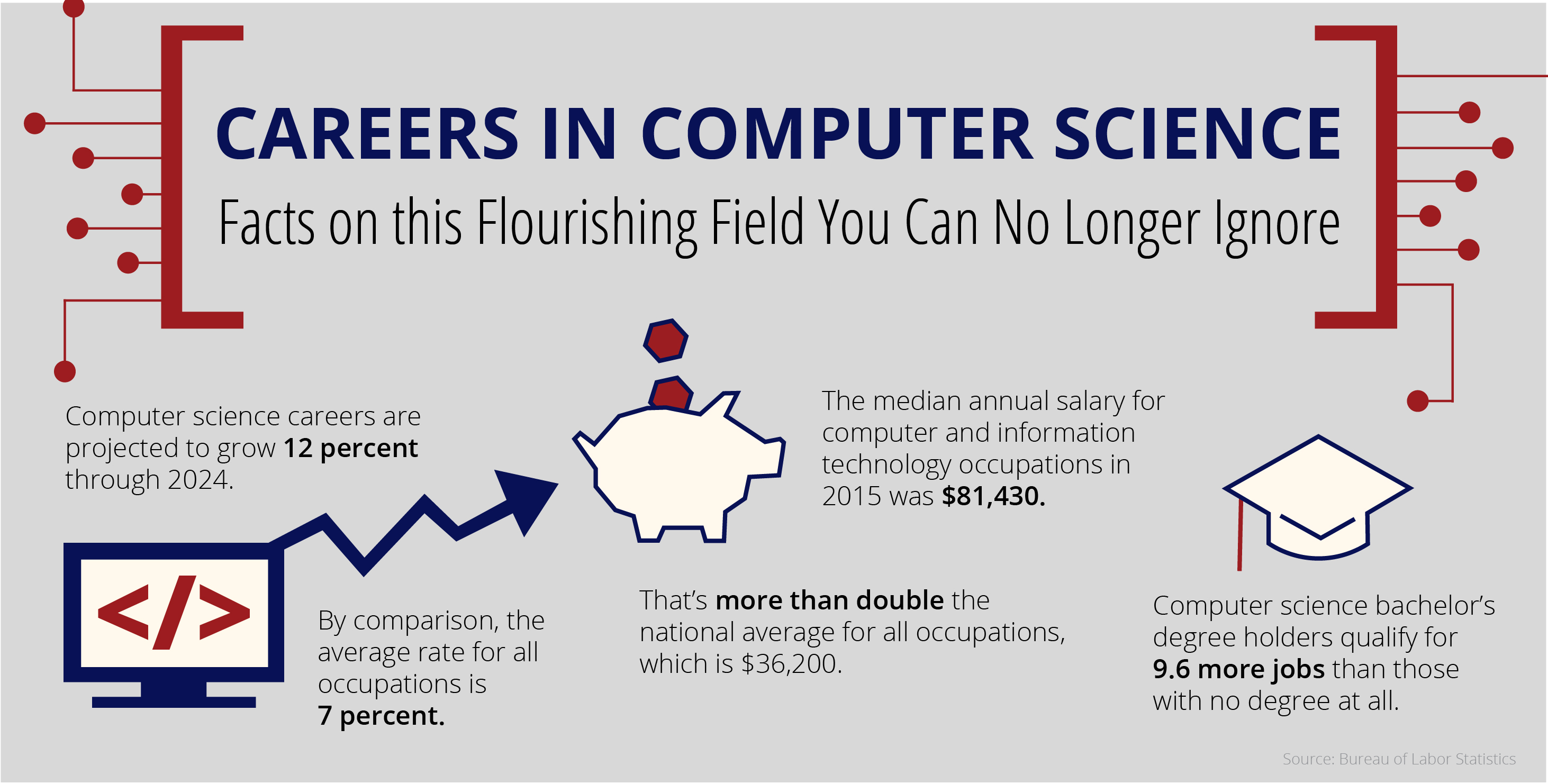 Infographic About Careers in CIS statistics